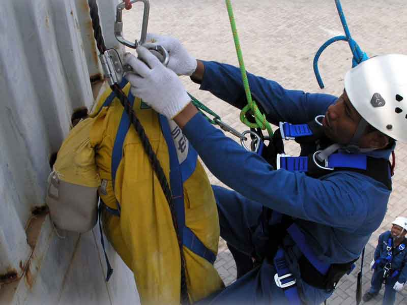Fall Protection & Basic Rescue